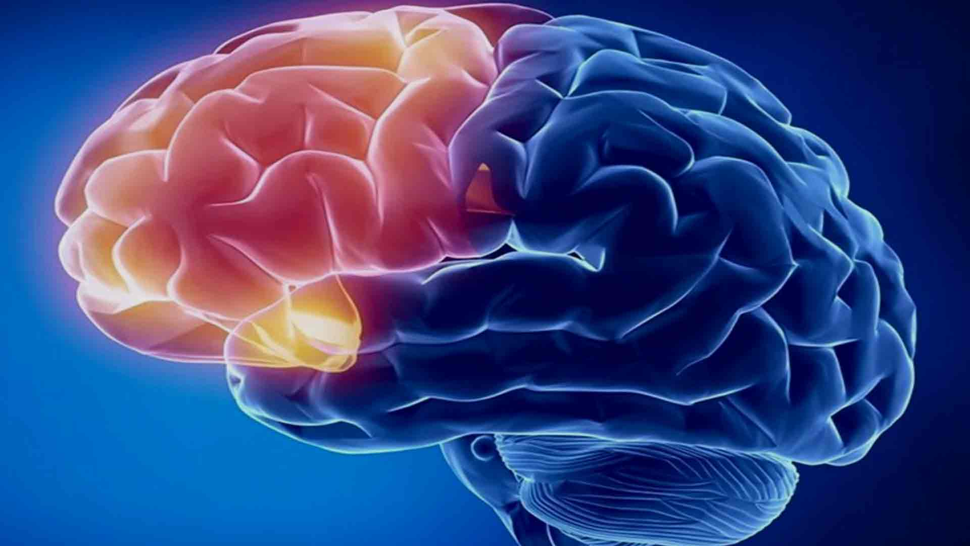 Neurofeedback training/therapy rewire the brain for ...